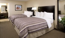Superior Room Two Queen Beds